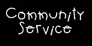 View networking as community service