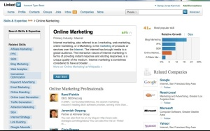 Online Marketing search string on LinkedIn Skills